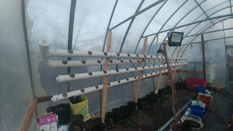 72 hole vertical grow setup for strawberry and lettuce , nasturtium etc 1-10-21