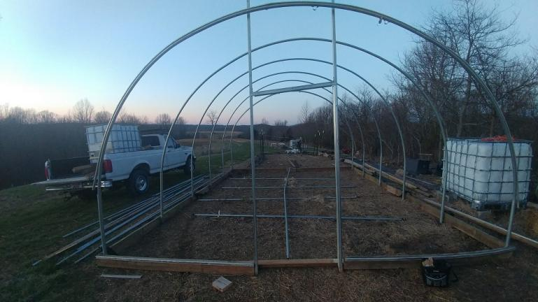 Greenhouse posts leveled and arches inserted  2-22-20