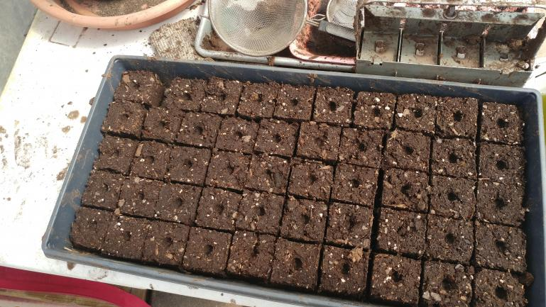 Compressed soil block for seed starting eliminates a lot of crappy disposable plastic and gives the transplants an easier transition.