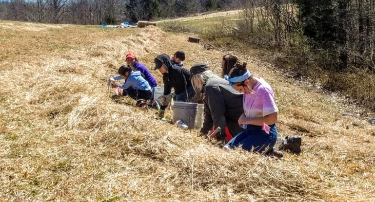 Tree planting crew 3-23-19