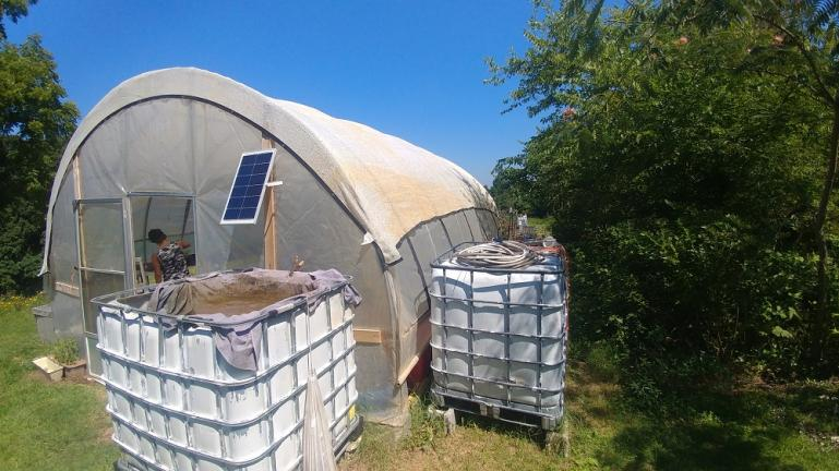 Solar panel for greenhouse lights, compost tea tank and water tank.