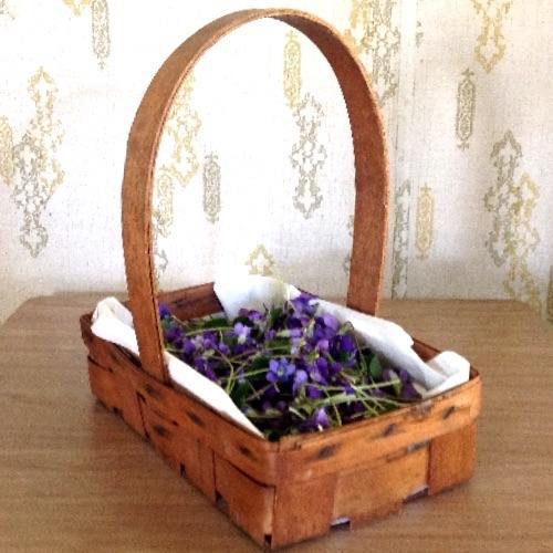 spring violet harvest