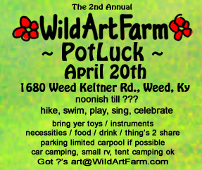 2nd Annual Pot Luck Party