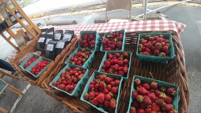 Market Strawberries and Sour Cherries  5-29-21