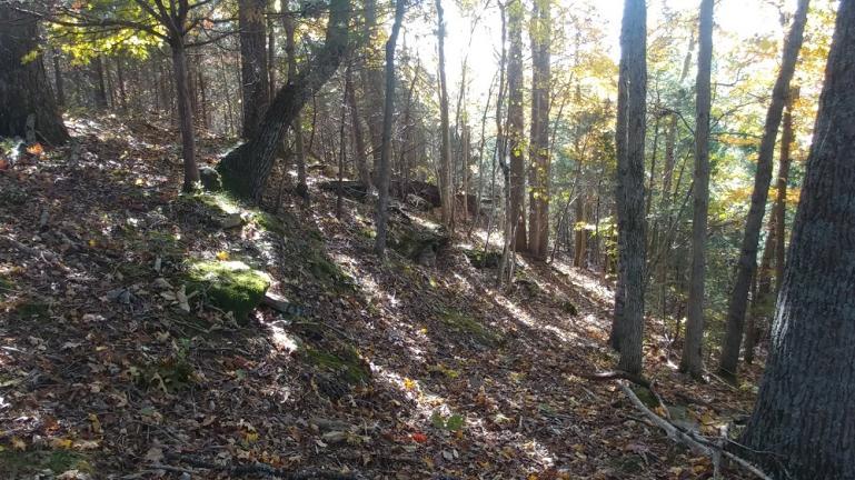 fall woodland trail 10-30-18