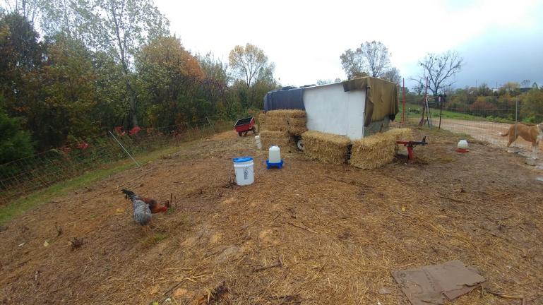 Winterizing the Chicken Coop 10-31-19
