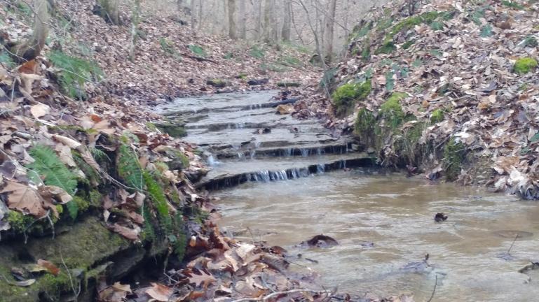 the creek 12-25-18