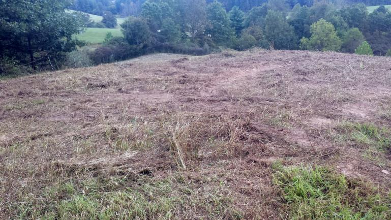 before photo of a swale leading to a water collection pool at the top of the hill