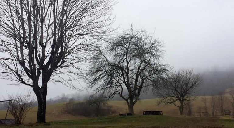 moody farm