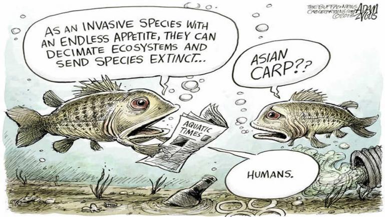 Selective diligent invasivorism, we have the power.