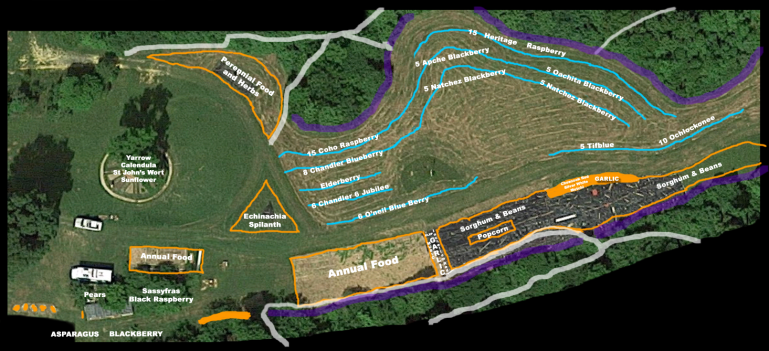 planted areas and plans for the 2019 main crop areas