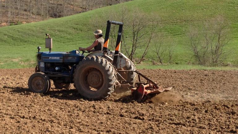 Tilling the field
