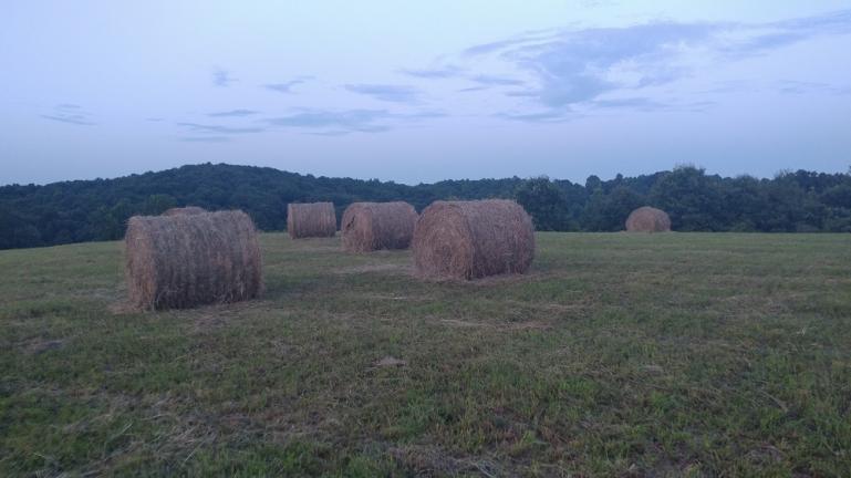 Hay on the Horizon