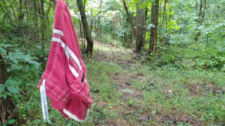 Celebrate Hike Naked Day  <br> @ Wild Art Farm ~ June 21st