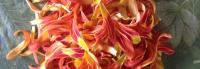 Day Lilly Edible Petals