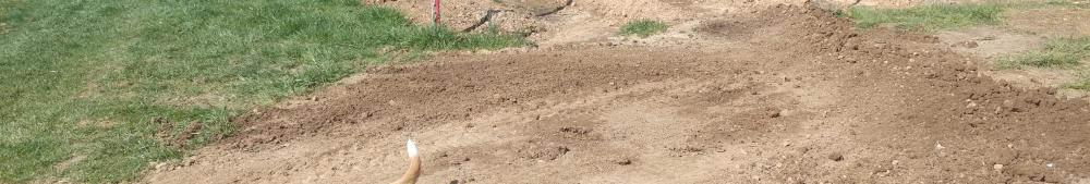 """Bartered top soil moved into """"The River"""" annual crops area"""