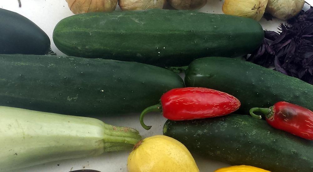 Market More Cucumbers